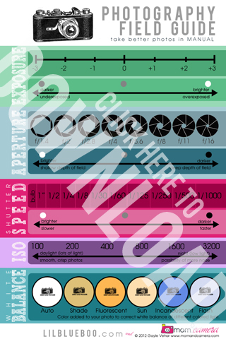 Photography Field Guide / Cheat Sheet Free Download via lilblueboo.com