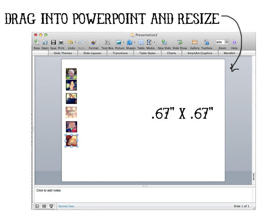 Step 4 Drag into Powerpoint via lilblueboo.com