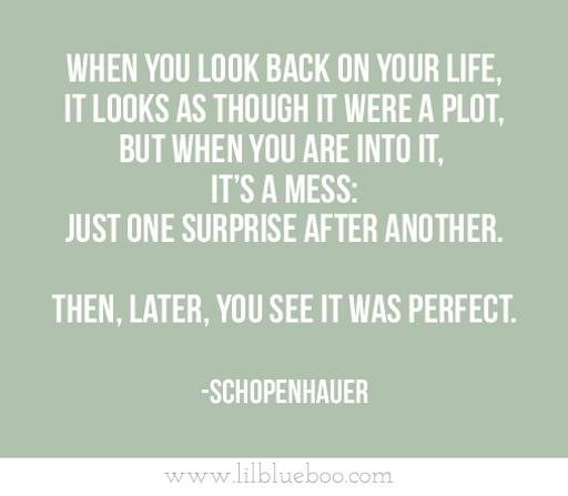 Schopenhauer via lilblueboo.com