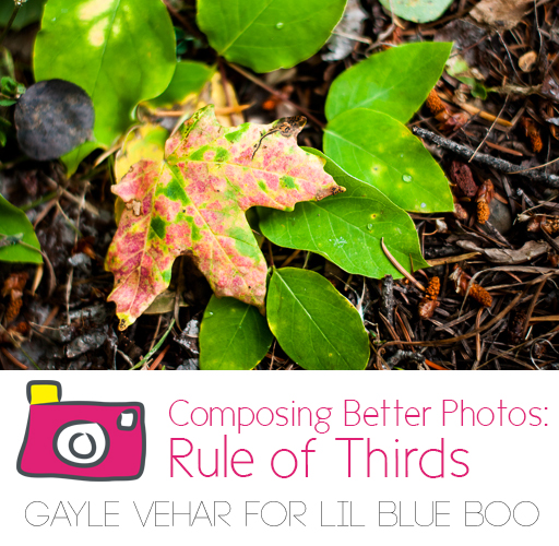 Composing a Better Photo: Rule of Thirds #photography via lilblueboo.com