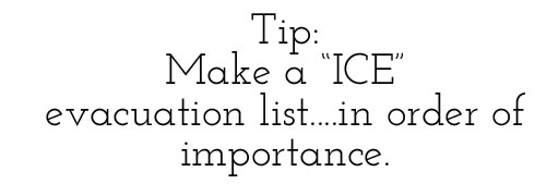 Tip: Make an ICE list via lilblueboo.com