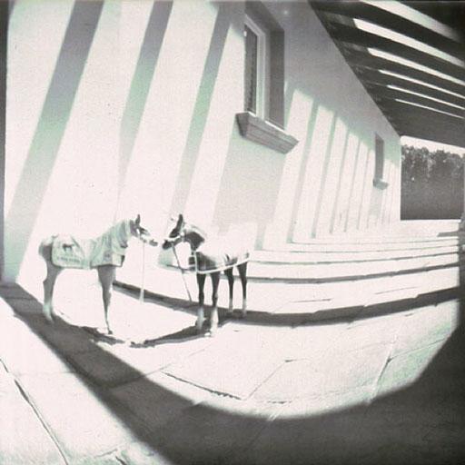 pinhole photographers