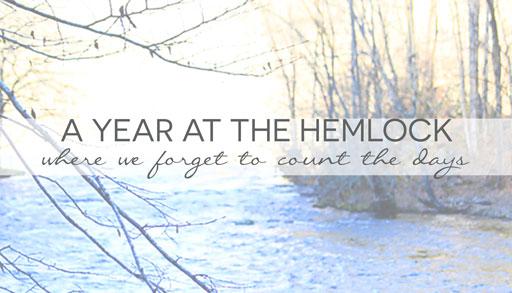 A Year at the Hemlock Inn Bryson City, NC Ashley Hackshaw / Lil Blue Boo