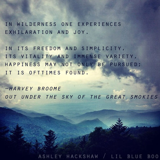 """Waterrock Knob - Harvey Broome - Out Under the Sky of the Great Smokies """"A Year at the Hemlock"""" via Ashley Hackshaw / Lil Blue Boo"""