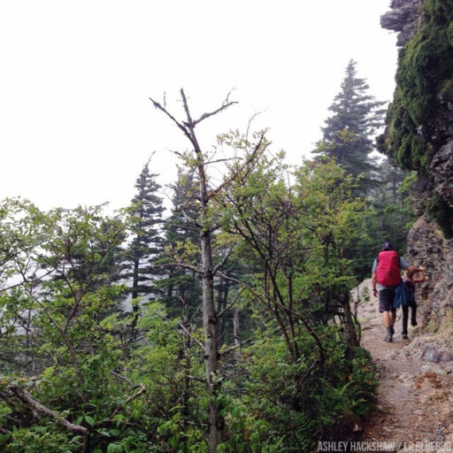 Climbing to Mt. LeConte and Mount Le Conte Lodge via Alum Cave Trail
