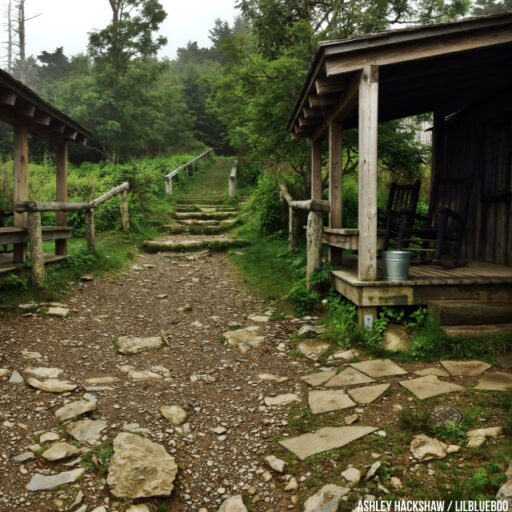Staying at Mt Le Conte Lodge on top of Mount LeConte