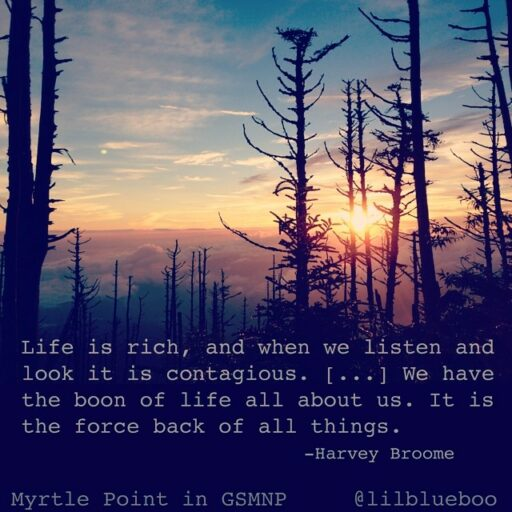 Life is Rich quote by Harold Broome - Great Smoky Mountains National Park - Mt LeConte and Lodge