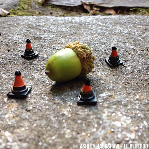 miniature figure photography - acorn in cones #miniature
