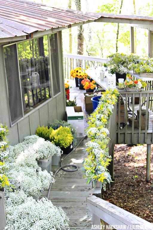 yellow flower theme for wedding