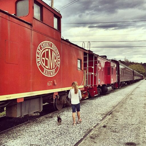 Great Smoky Mountains Railroad - Bryson City, NC