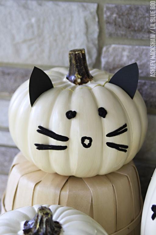 cat no carve pumpkin decorating ideas