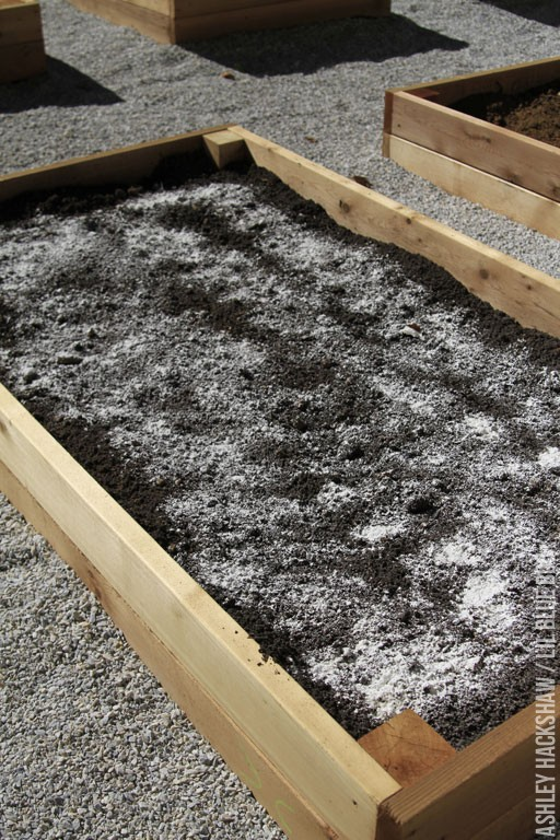 The Best Soil for a Raised Bed Vegetable Garden