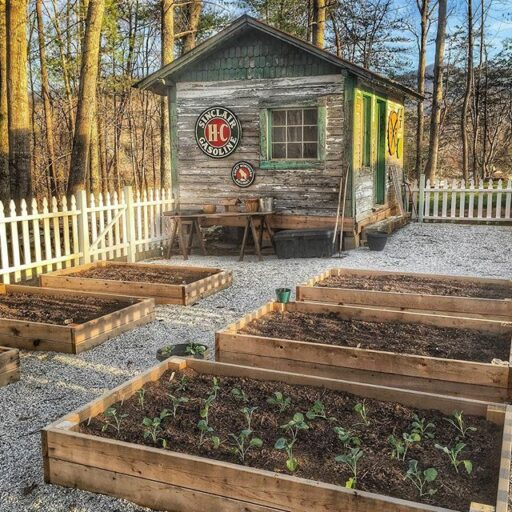 Spring Garden Planting - Raised Beds