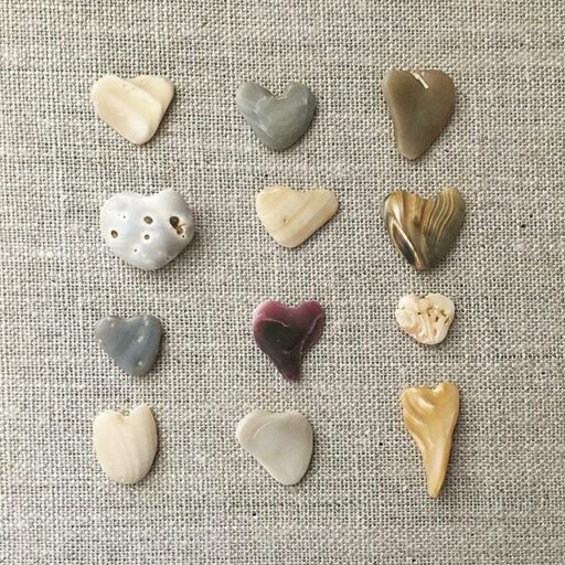 Heart shaped seashells and rocks
