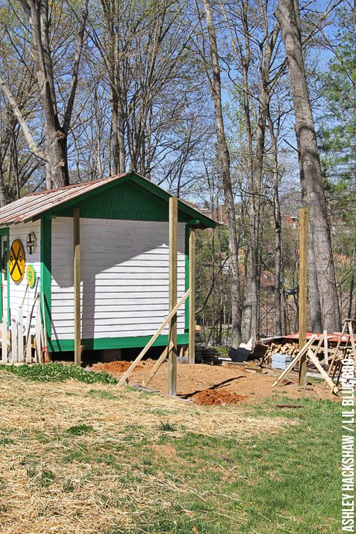 building a large predator proof chicken run and coop
