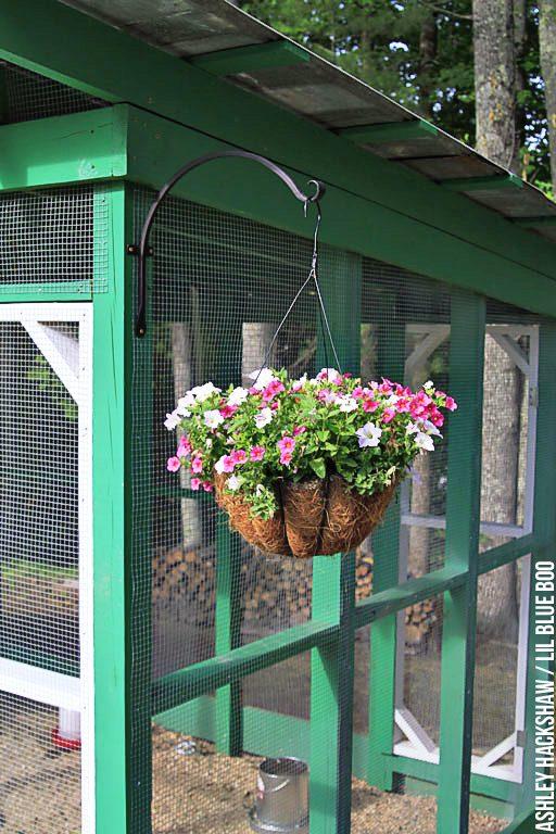 Chicken Coop Home Design Ideas, Pictures, Remodel