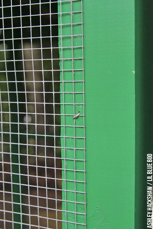 How to secure hardware cloth and chicken wire to wood - chicken coop security