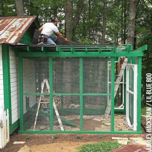 chicken run roof materials