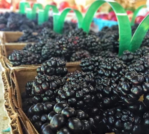 Local Produce - Darnell Farms - Bryson City