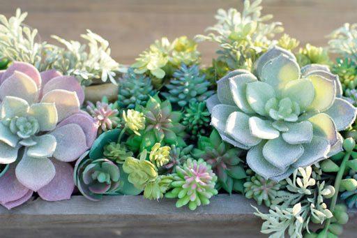 Artificial Succulents from Michaels - Succulent arrangements centerpiece DIY