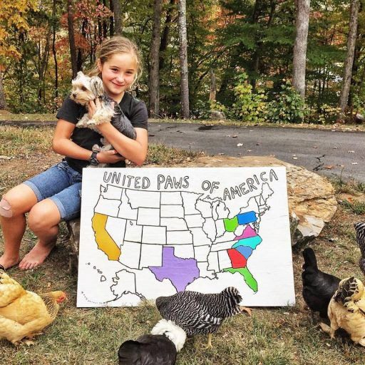 United Paws of America