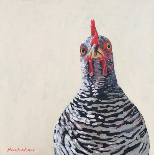 """Henriette Barred Rock"" Acrylic on 20"" x 20"" Canvas Available on Etsy - Chicken Painting by Ashley Hackshaw / Lil Blue Boo"