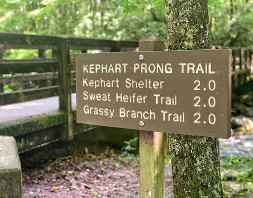Kephart Prong Trail and Remnants of an CCC Camp
